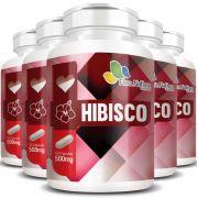 Hibisco - 100% Puro - 5 Potes c/ 60 cápsulas cada