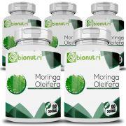 Moringa Oleifera - Original - 500mg - 5 Potes