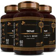 Sene - Fan Xie Ye (Folium Sennae) - 500mg - 03 Potes