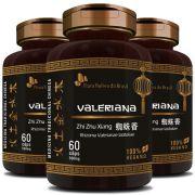 Valeriana Zhi Zhu Xiang Rhizoma Valerianae Latifoliae - 100% Vegano - 500mg - 3 Potes