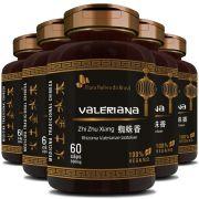 Valeriana em Cápsulas de 500mg - 100% Pura (Zhi Zhu Xiang Rhizoma Valerianae Latifoliae) - 5 Potes