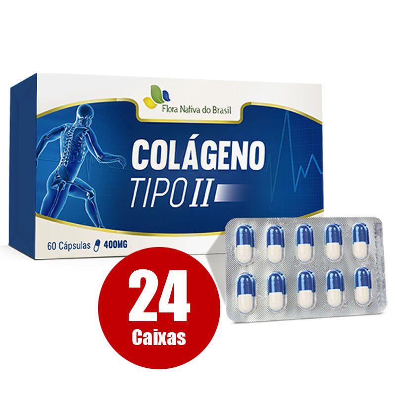 Colágeno Tipo 2 - UC II- Original - 400mg - 24 Caixas (Atacado)  - LA Nature