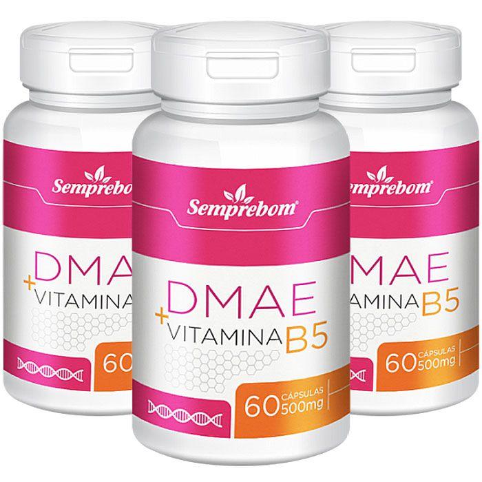DMAE + Vitamina B5 - cápsulas de 500mg (03 Potes)  - LA Nature