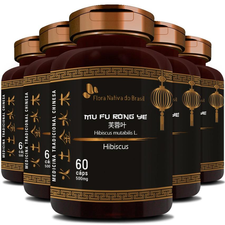 Hibisco Hibiscus Original Vegano 500mg - 5 Potes (300 cáps)