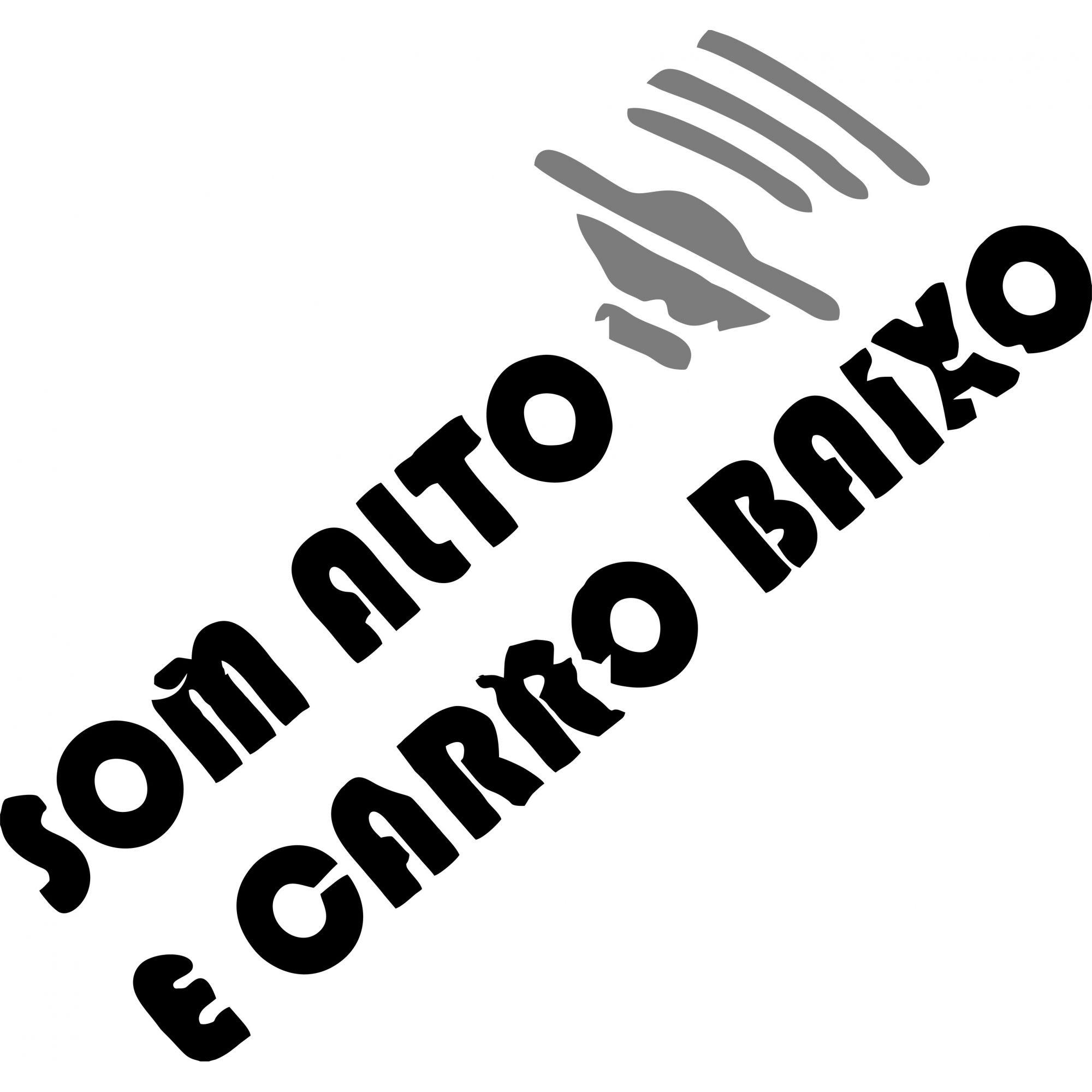 A1509 Auto Adesivo Automotivo Som Alto e Carro Baixo