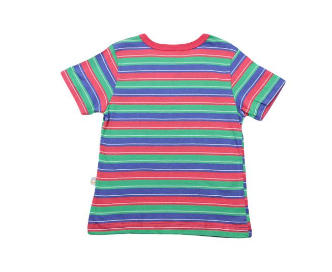 Camiseta Listrada Verde/Azul/Vermelho Boca Grande