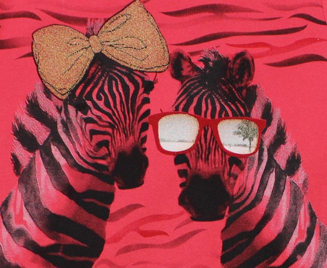 Conjunto de Inverno Feminino Brandili Blusa de Zebra e Calça