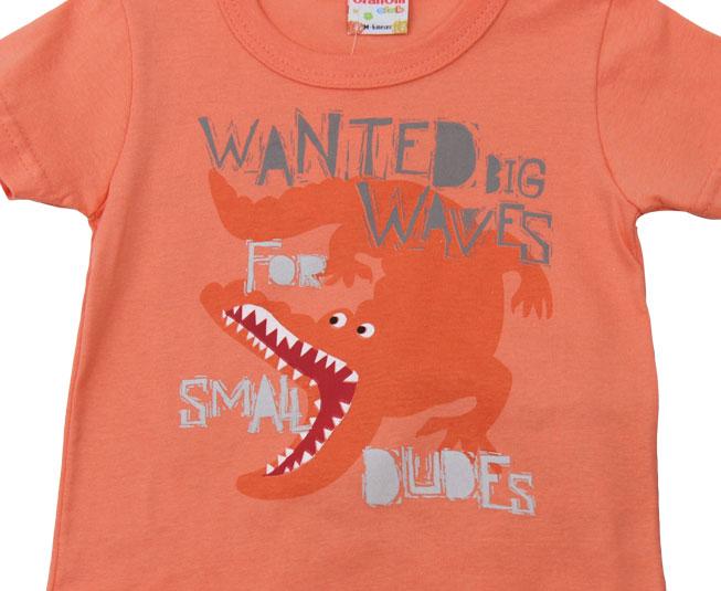 Conjunto Masculino 'Wanted Big Waves for small dudes' Brandili