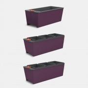 Kit 3 Vasos Autoirrigáveis Cultive Berinjela - 2 Triplos + 1 Simples