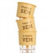 Kit 3 Vasos Autoirrigáveis Plante o Bem Pêssego MÉDIO