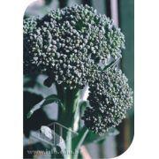 Sementes de Couve-Brócoli Ramoso Santana