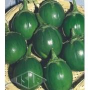 Sementes de Jiló Morro Grande Verde Escuro (Isla Superpak)
