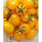 Sementes de Tomate Sicília Híbrido (Isla Pro)