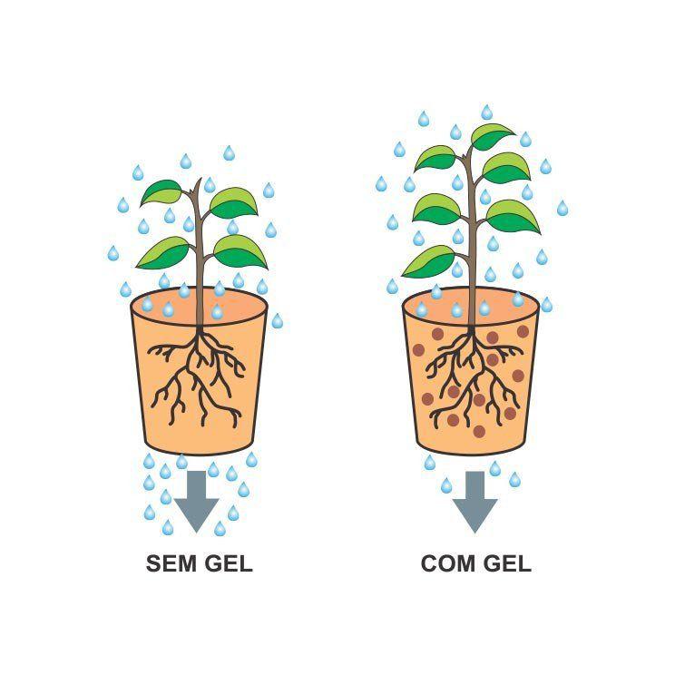 Gel Para Plantio De Mudas - Forth Gel - 12 Kg