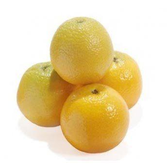 Muda de Limão Galego