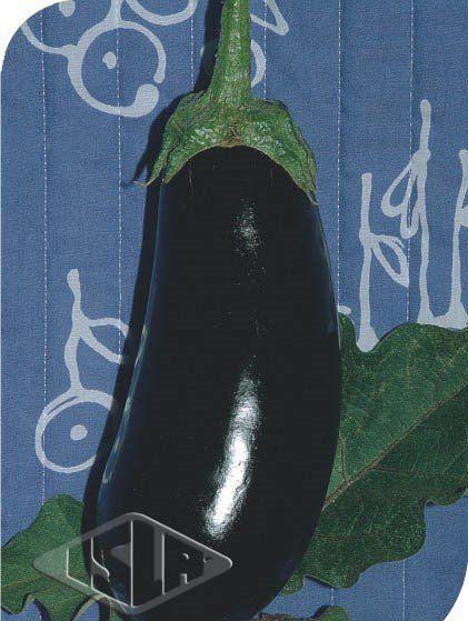 Sementes de Berinjela Preta Comprida (Isla Superpak)