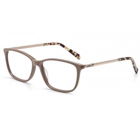 Armação de Óculos Colcci  c6067j4252 Nude