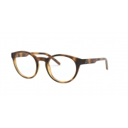 Armação Oculos Arnette The Seeker An7182 2675 49 Marrom Tartaruga