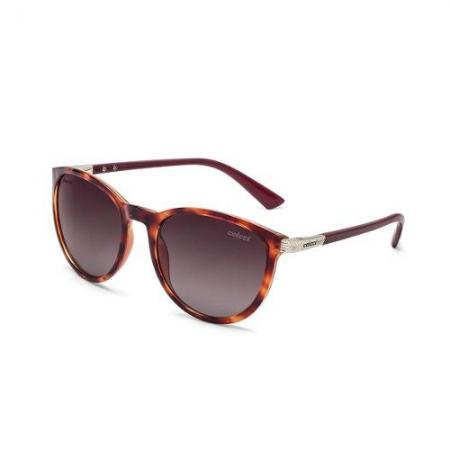 Oculos Solar Colcci Donna C0030f4748 Bordô Polarizado