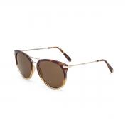 Óculos Solar Colcci Linda c0095 fb702 Tartaruga 55 Marrom Lente Marrom Convencional