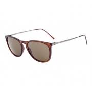 Óculos Solar Hb Tanami 10100070284004 Marrom  Lente Marrom Convencional