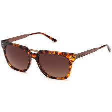 Oculos Solar Colcci 5024 Cod. 502491771 Turtle