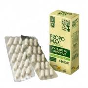 Extrato de Própolis Propomax com 30 cápsulas