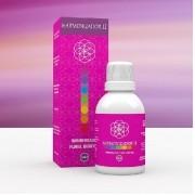 Harmonizador II 50 ml Chakras Fisioquantic
