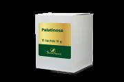 Palatinose 10 g 15 Sachês