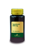 Terminuric 500 mg 30 Cápsulas