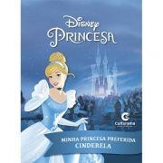 Livro de História Cinderela: Princesas Disney -  (Médio)