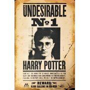 Placa Decorativa Undesirable: Harry Potter
