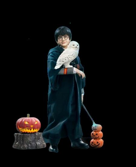 Action Figure Harry Potter Halloween: Harry Potter e a Pedra Filosofal (Sorcerer's Stone) (Escala 1/6) - Star Ace