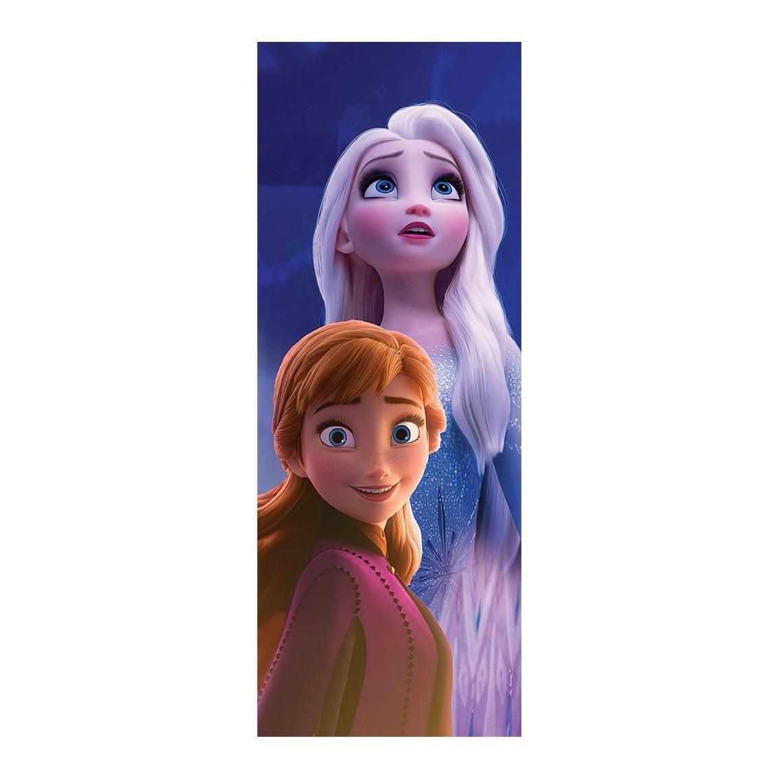 """Adesivo (Sticker) Para Porta """"Elsa e Anna"""": Frozen - Exclusivo"""