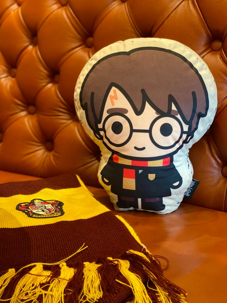 Almofada Geek Personagem Harry Potter: Harry Potter