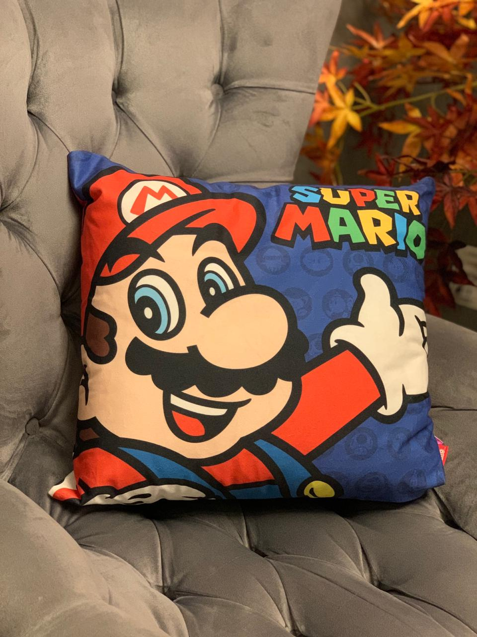 Almofada Mario e Luigi: Super Mario Bros