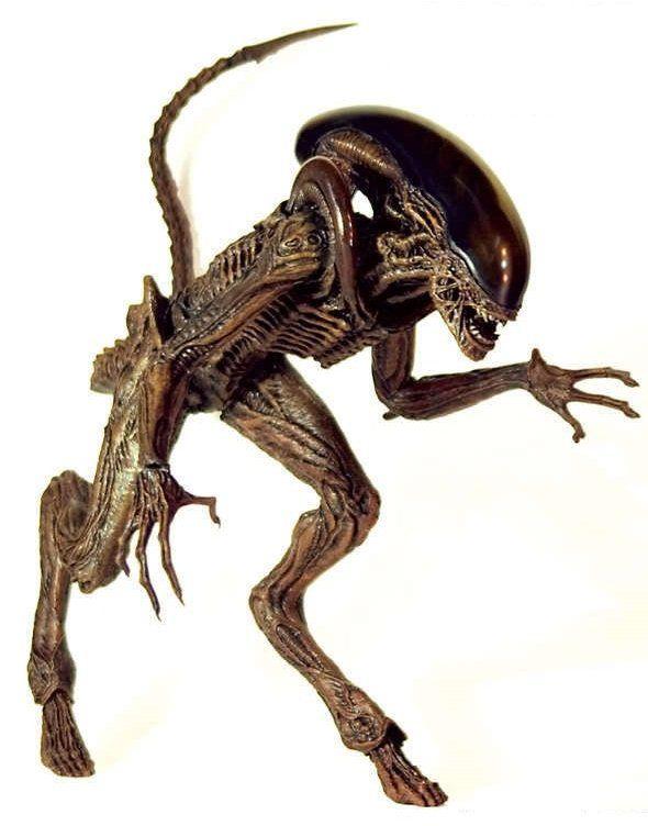 Boneco Dog Alien: Alien 3 Escala 1/6 (MMS77) - Hot Toys - CG