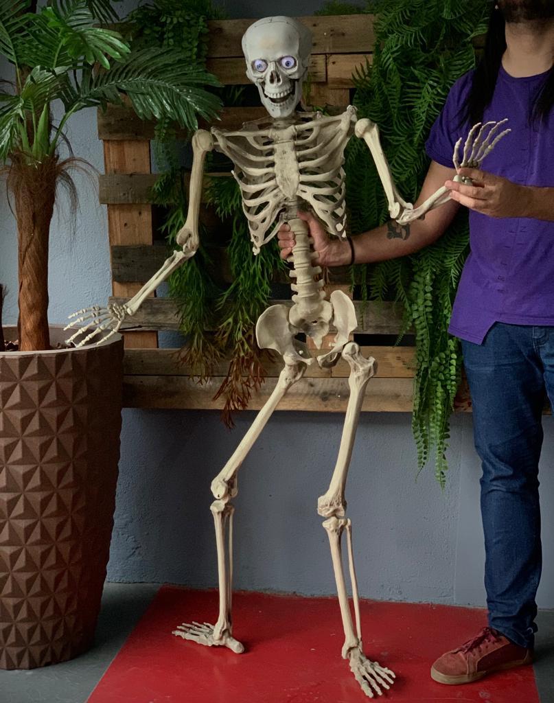 Corpo Esqueleto Humano Articulado Caveira Skull Com Som: Terror Halloween Dia das Bruxas 158cm