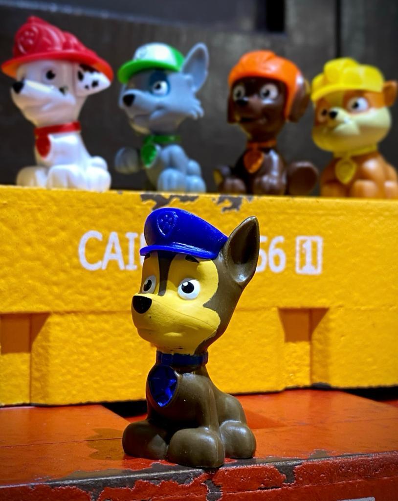 Figuras Chase: Patrulha Canina - Sunny