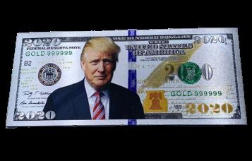 Ímã Dólar Trump 2020 - (Prata)