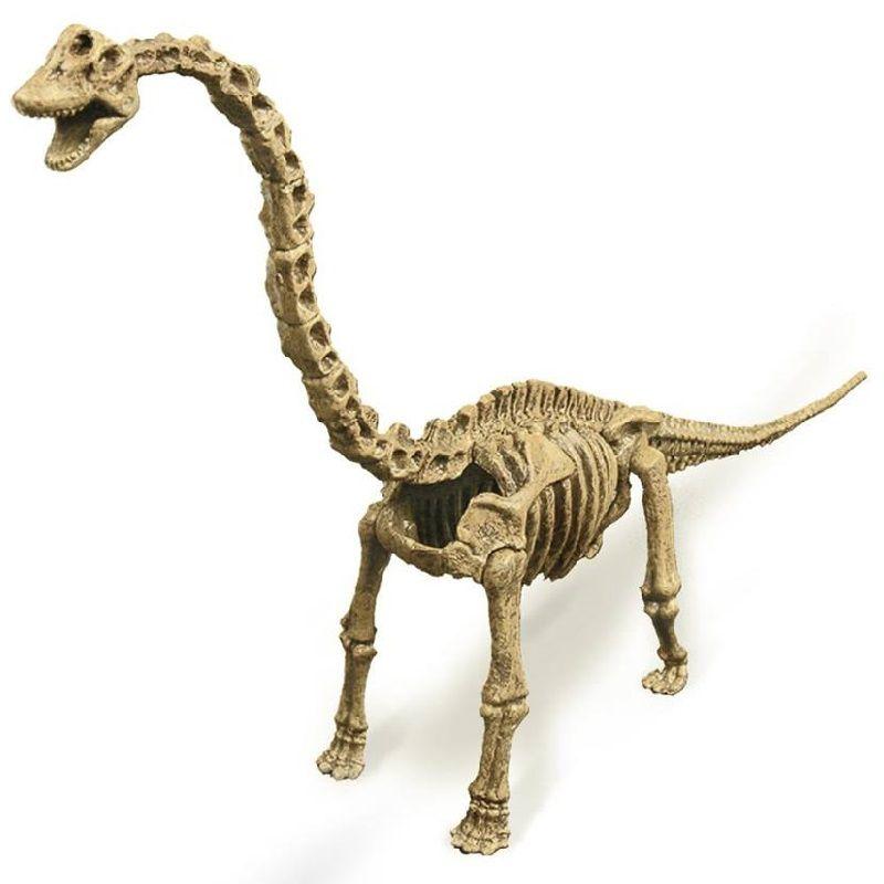 Kit Escavação Dinossauro Brachiosaurus - Geoworld