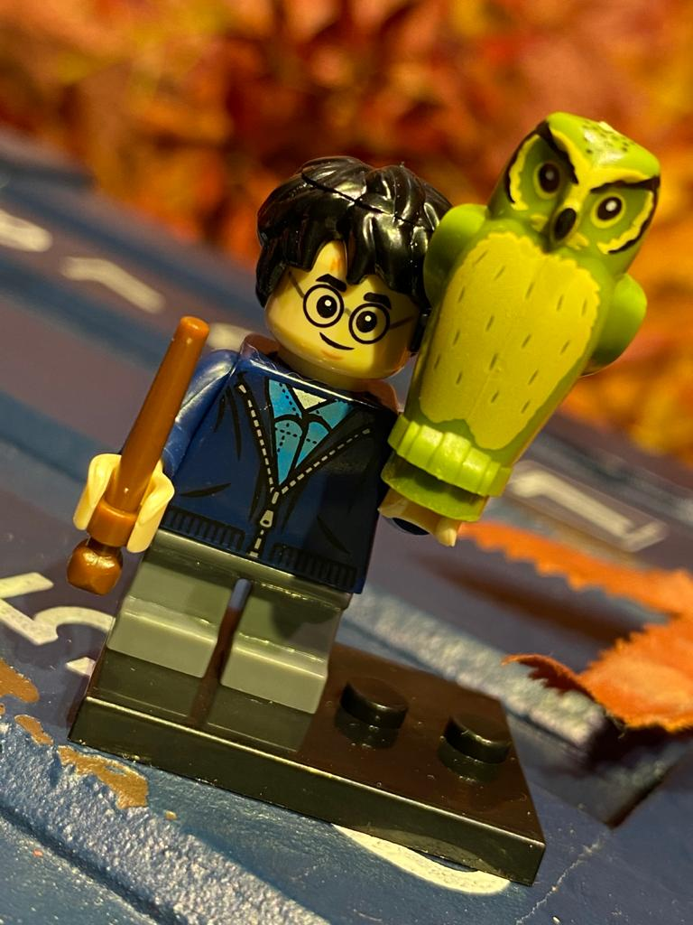 LEGO: Harry Potter Traje Civil - Harry Potter