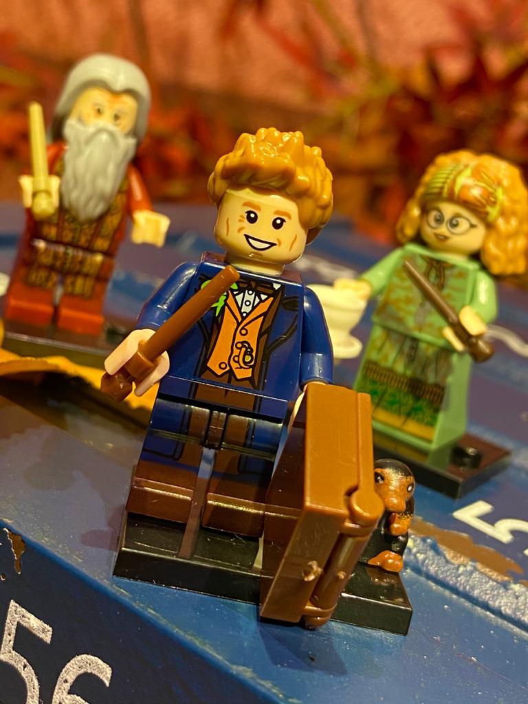 LEGO: Newt Scamander -  Animais Fantásticos e Onde Habitam