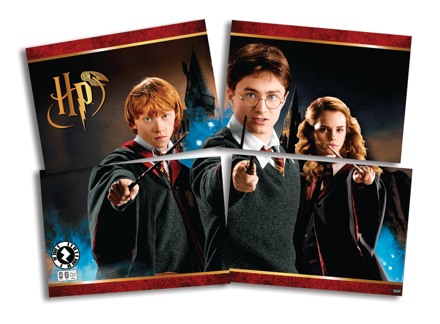 Painel Decorativo: Harry Potter - Festcolor
