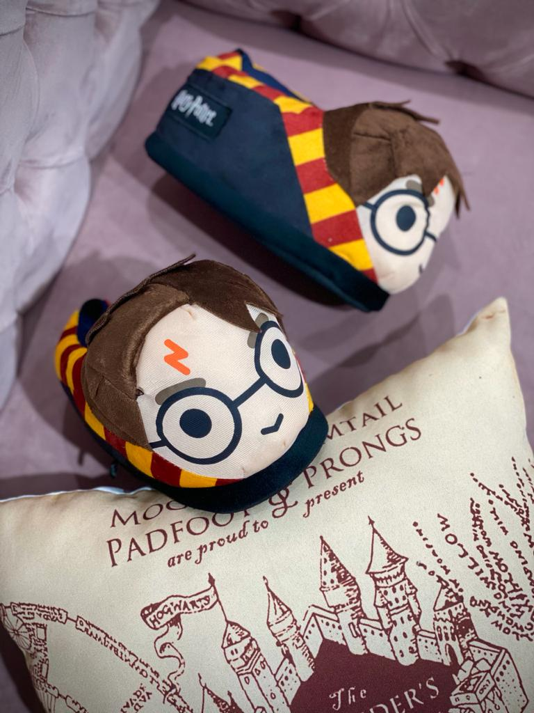 Pantufa 3D Harry Potter: Harry Potter - Ricsen