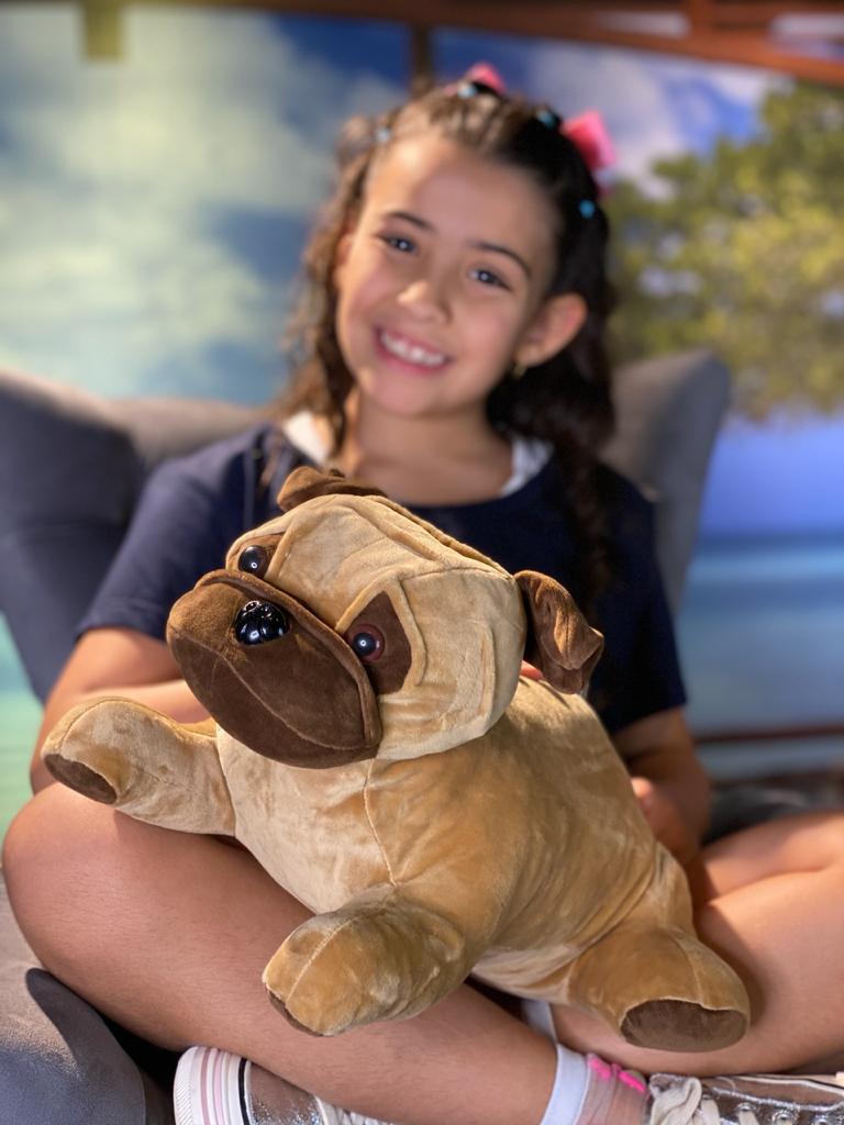 Pelúcia Cachorro Pug (36cm) (Médio)