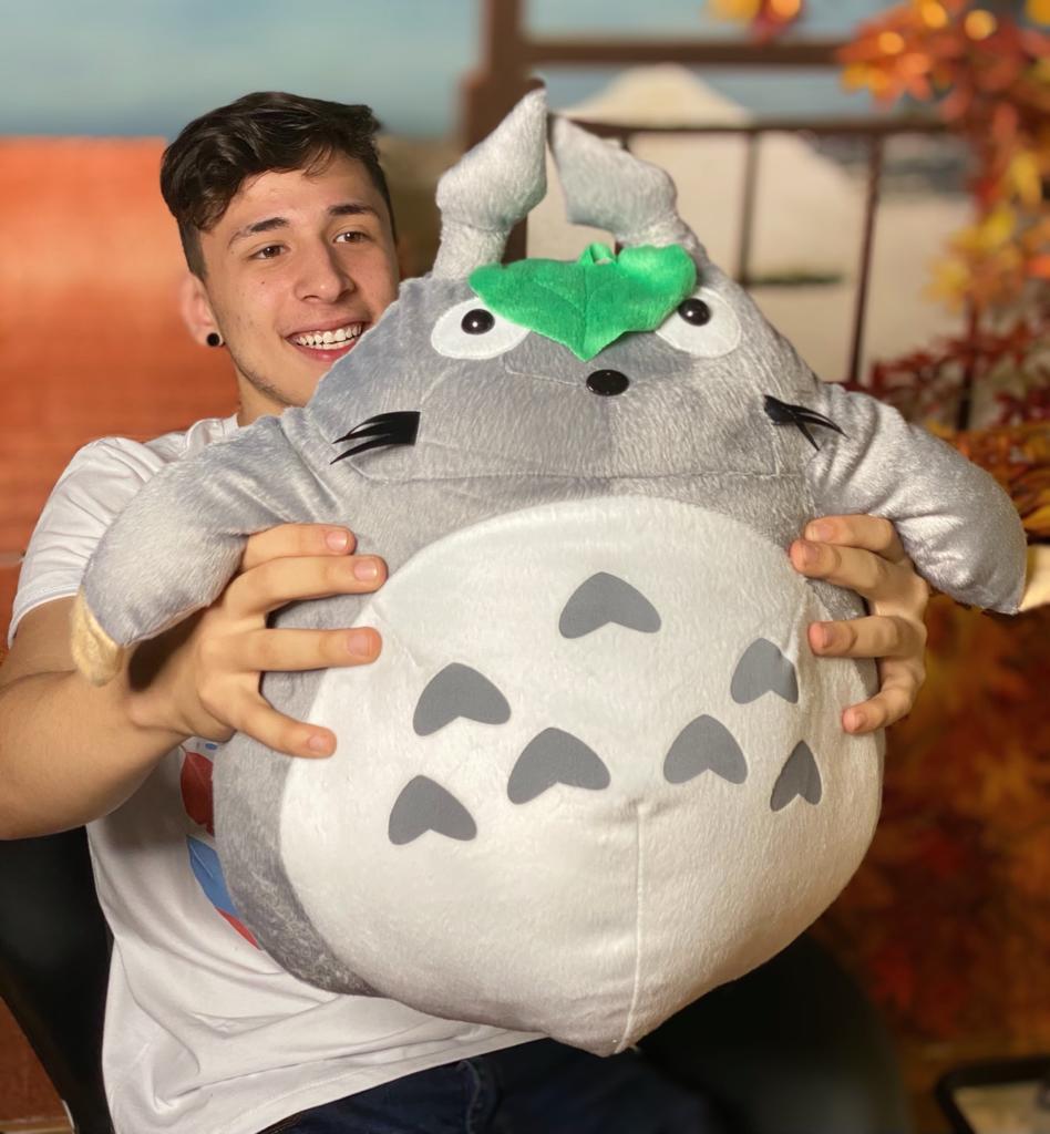 Pelúcia Grande Totoro: Meu Amigo Totoro