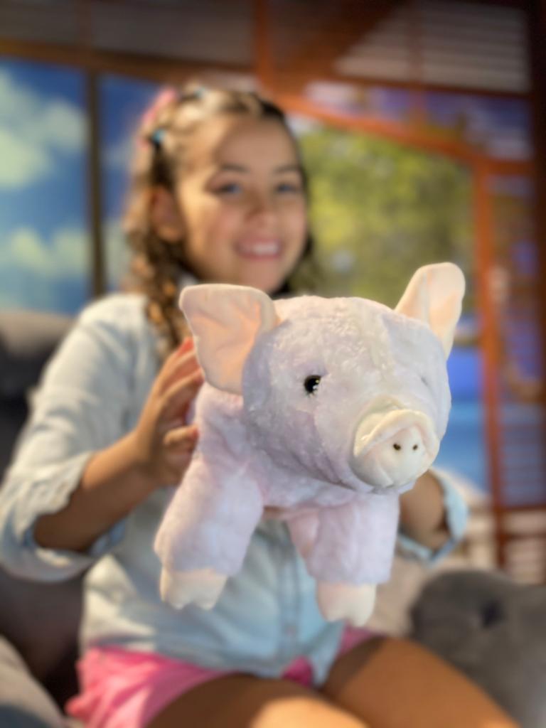 Pelúcia Porco: Pequeno 22cm