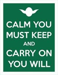 "Placa Decorativa ""Calm You Must Keep And Carry On You Will"""