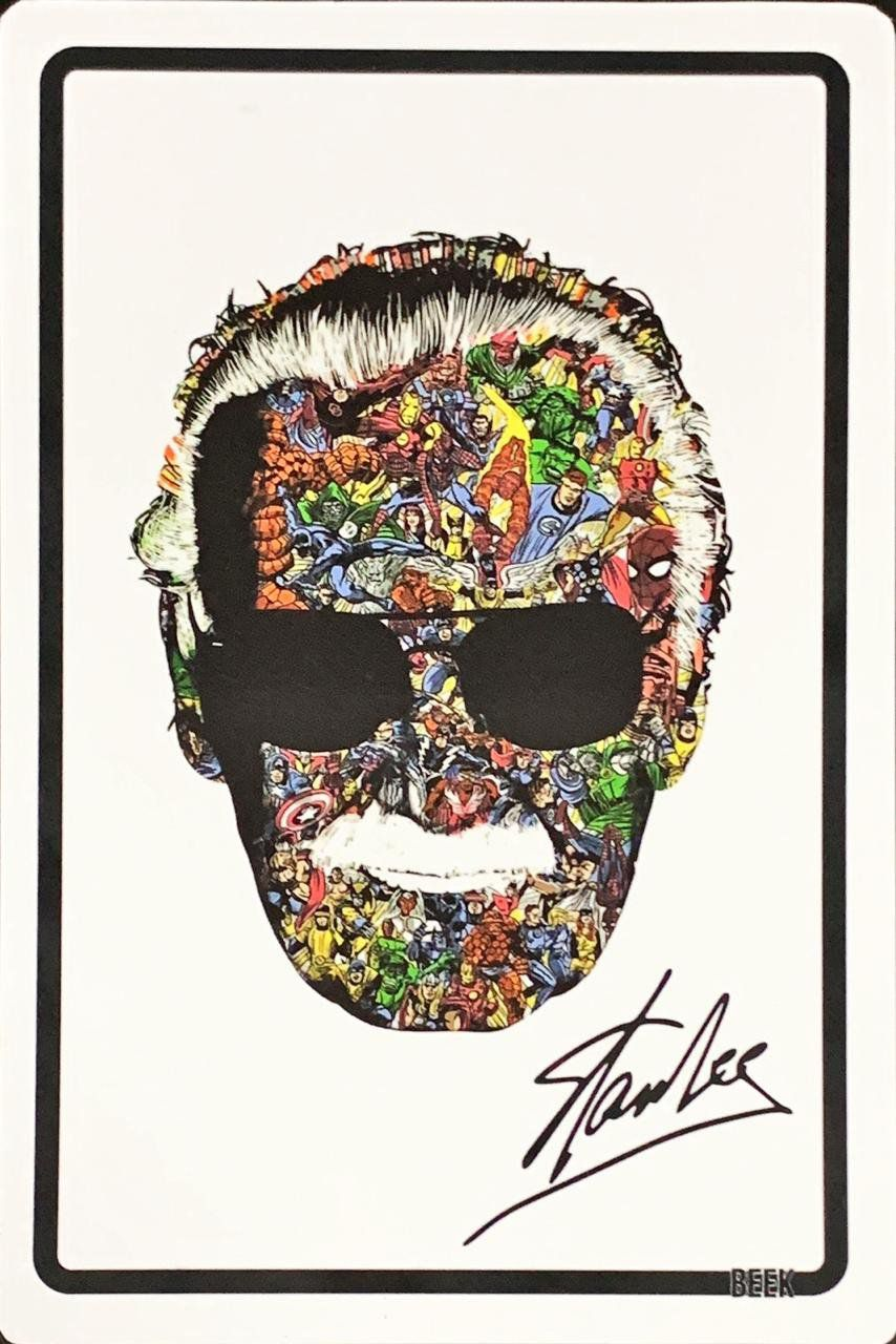 Placa Decorativa Stan Lee: Marvel Comics